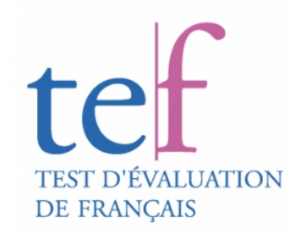 TEF French classes