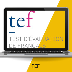 french tef classes